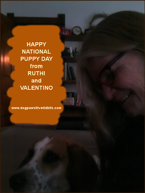 Happy National Puppy Day from Ruthi and Valentino