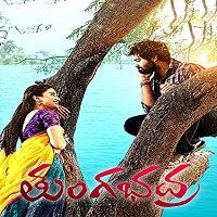 Bhadra The Rowdy (Tungabhadra 2021) Hindi Dubbed Full Movie Watch Online Movies