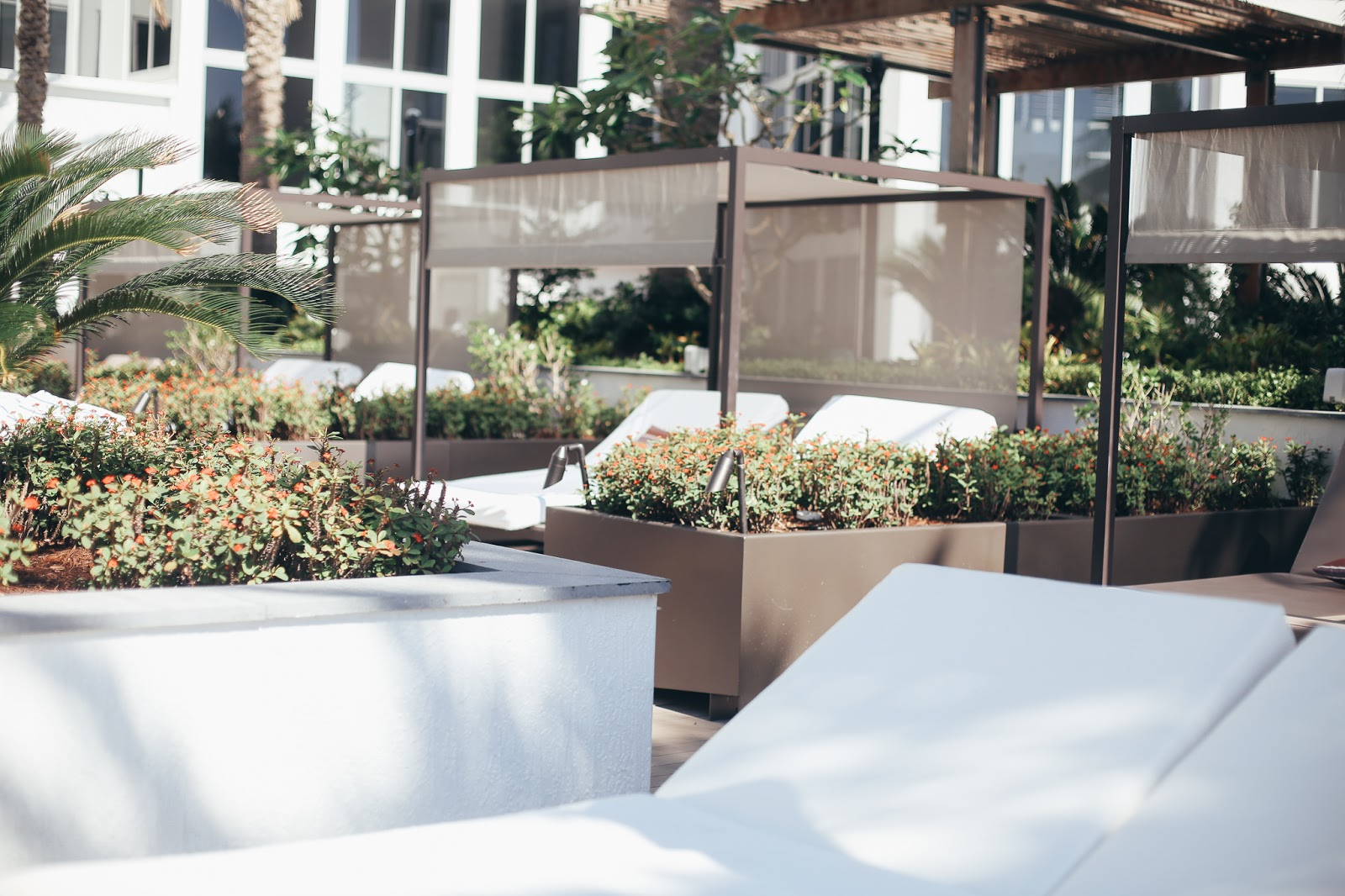 nobu Miami pool