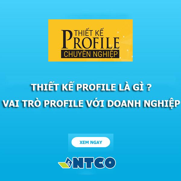 thiet ke profile