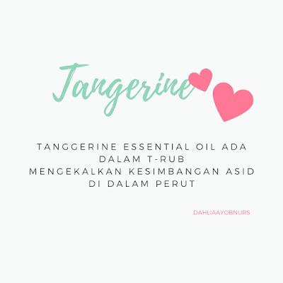 Manfaat Minyak Pati Tangerine - T-Rub