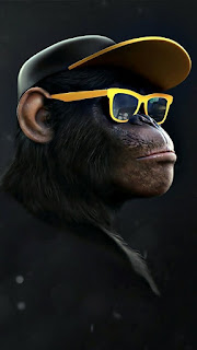 Gambar profil dp wa hitam keren