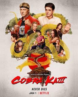 Review – Cobra Kai: 3ª Temporada
