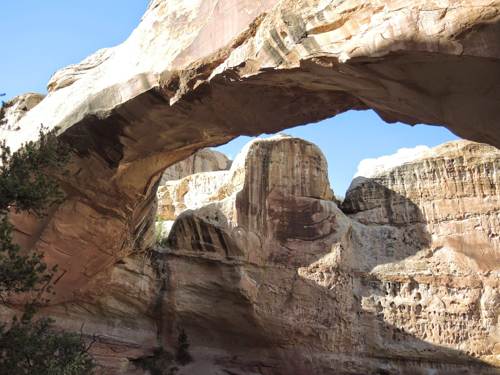 Capitol Reef National Park 23