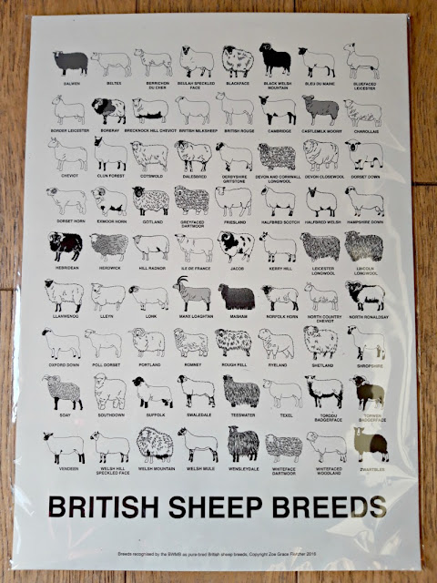 British sheep breeds poster - The Woolist - The Woolist talk - Theatr Clwyd Sept 2019