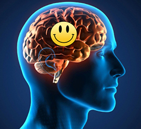 Image result for formas de ser feliz neurociencia