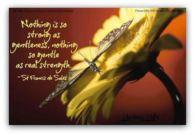 nothing as strong as gentleness