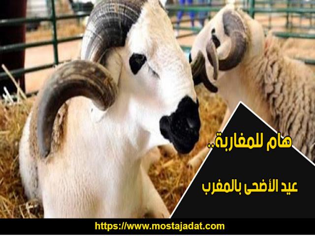 عيد الأضحى بالمغرب والدول الإسلامية يوم الجمعة 31 يوليوز