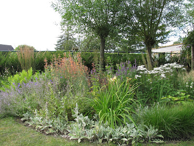 Ecologische siertuin, sierborder, natuurlijke tuin