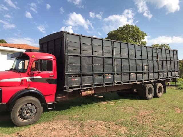 Polícia Civil esclarece furto de gado que causou prejuízo de R$ 100 mil em Junqueirópolis