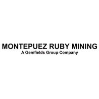 A Montepuez Ruby Mining, Lda, pretende admitir para o seu quadro de pessoal, para a vaga de administrador de projectos.