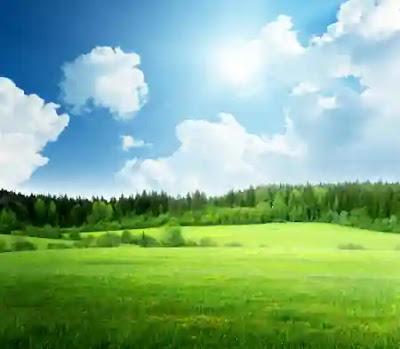 تفسير حلم الأرض الواسعة الخضراء