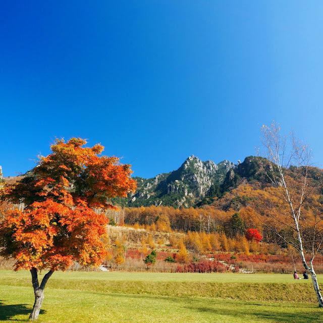 瑞牆山 みずがき山自然公園 紅葉