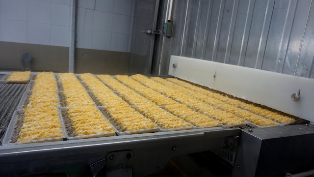 Raw Torpedo Vannamei Shrimp Going Through IQF Tunnel Freezer. Credit: Silvera Food
