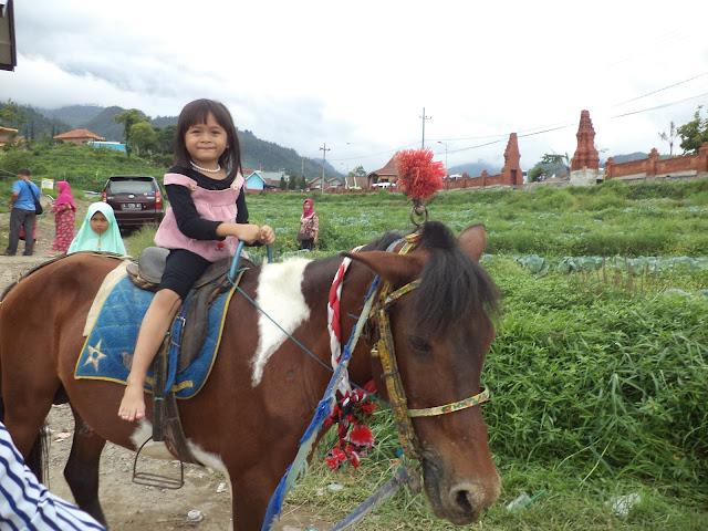 Wahana menunggang kuda hanya dengan membayar Rp25.000
