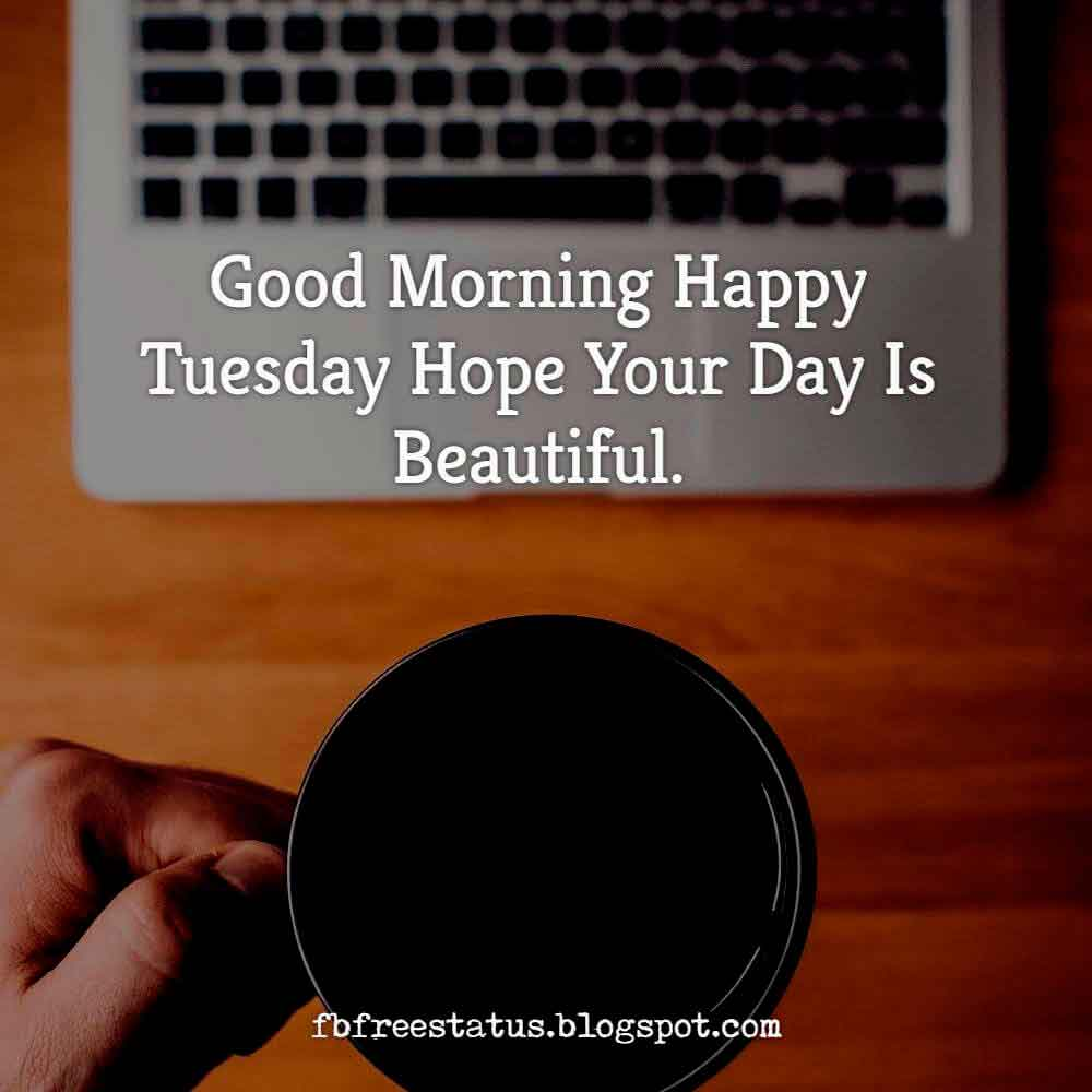 Good Morning, Happy Tuesday hope your day is beautiful.
