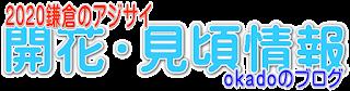 2020鎌倉あじさい開花・見頃情報