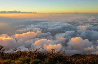 Sewa ELF Ke Gunung Cikuray Garut