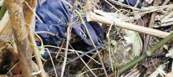 News, Kerala, Idukki, Women, Missing, Dead Body, Police, Crime Branch, Forensic Department, After a Year Dead Body Parts were Found
