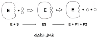 رسم تخطيطي لتفاعل تفكيك (هدم)