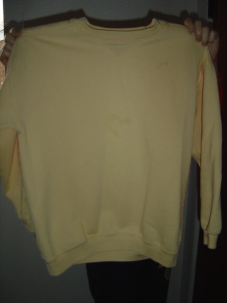 stained sweatshirt before washing with Purex plus Clorox 2 Detergent.jpeg