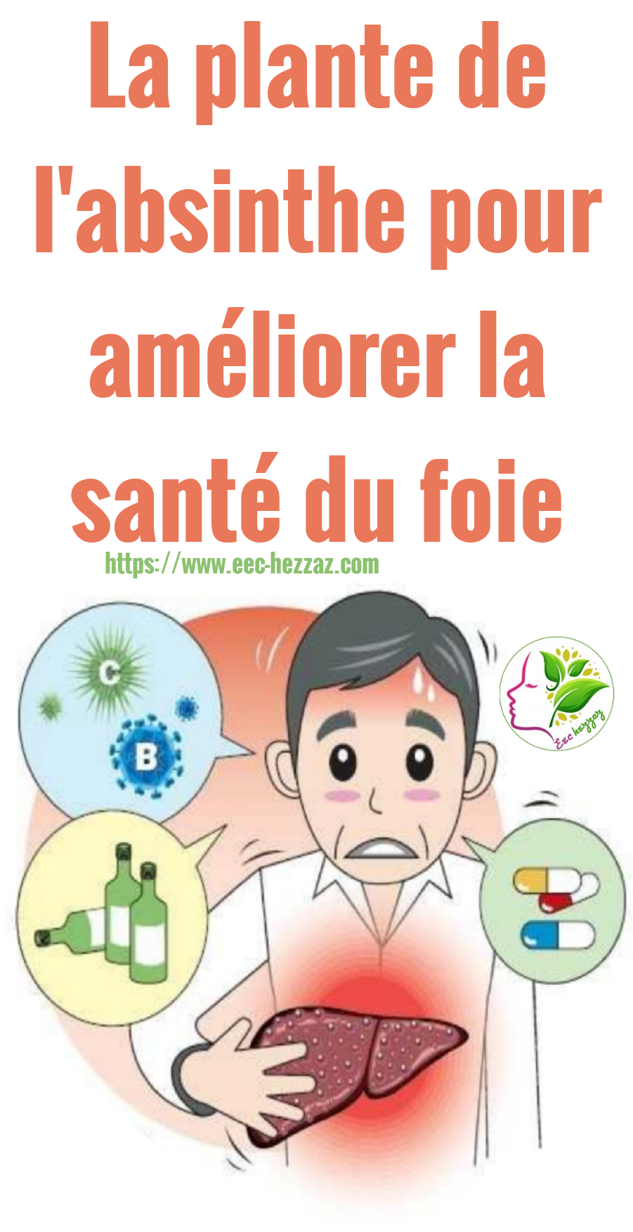 La plante de l'absinthe pour améliorer la santé du foie