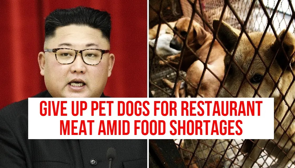 forced to give up their pet dogs