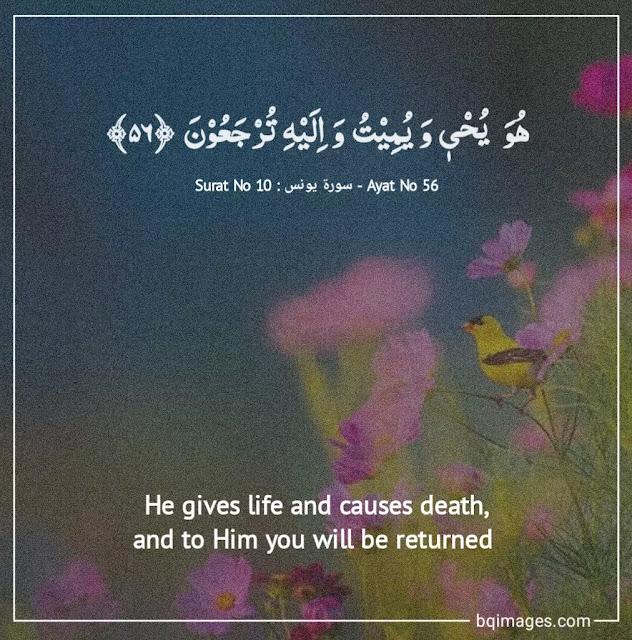 quranic verses with english translation