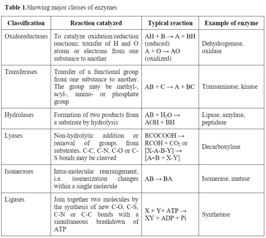Enzyme: Definition, Properties, Classification and Nomenclature