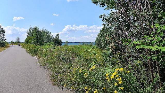 Teil eines Radweges, mit üppigem Grün und Blumen am Wegesrand, Ausblick auf den Zwenkauer See bei Sonnenschein.
