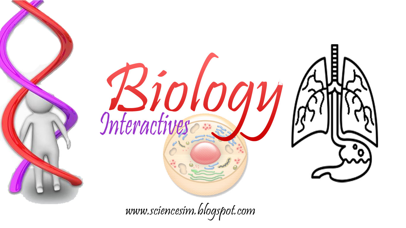Biology-Interactives