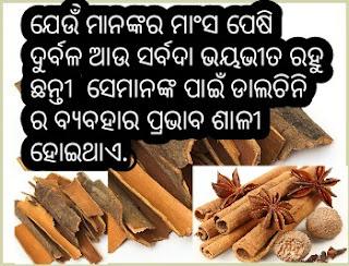 dalchini use for medicine .dalchini ra oushadhiya guna