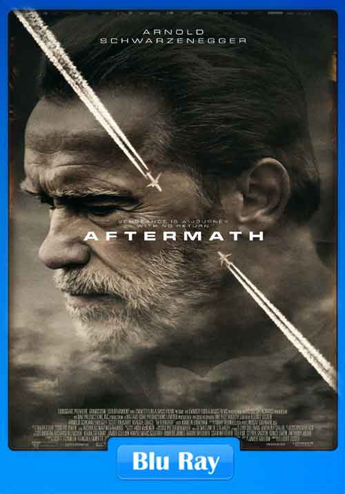 Aftermath 2017 480p BluRay 280MB x264 Poster