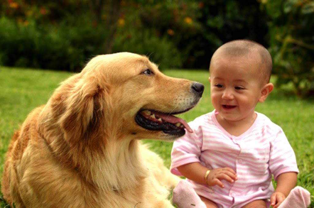 bayi-lucu-dan-anjingnya