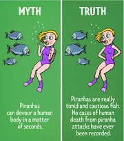 Some myth vs truth you don't believe but true