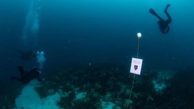 Το πρώτο υποβρύχιο μουσείο της Ελλάδας, στην Αλόννησο