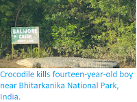 http://sciencythoughts.blogspot.co.uk/2018/04/crocodile-kills-fourteen-year-old-boy.html