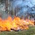 В Києві та області оголошено надзвичайний рівень пожежної небезпеки - сайт Голосіївського району