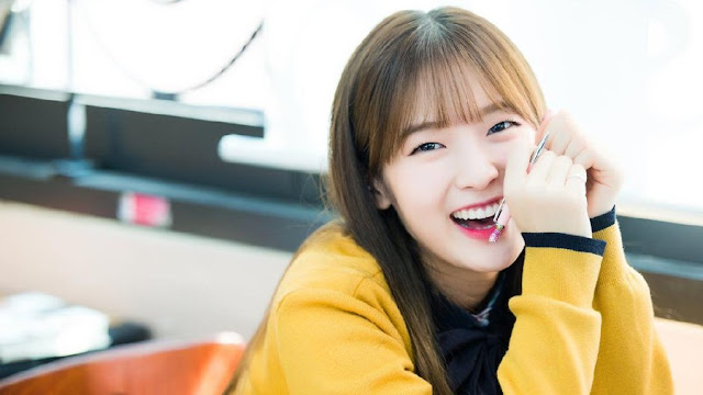 Arin Oh My Girl is Confirmed to Cast in Netflix Horror Korean Drama Goedam 2