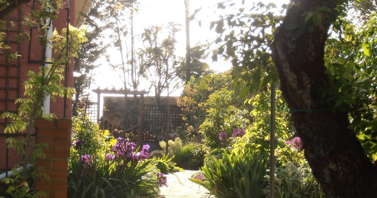 El jard n de la alegr a a contraluz for El jardin de la alegria cordoba