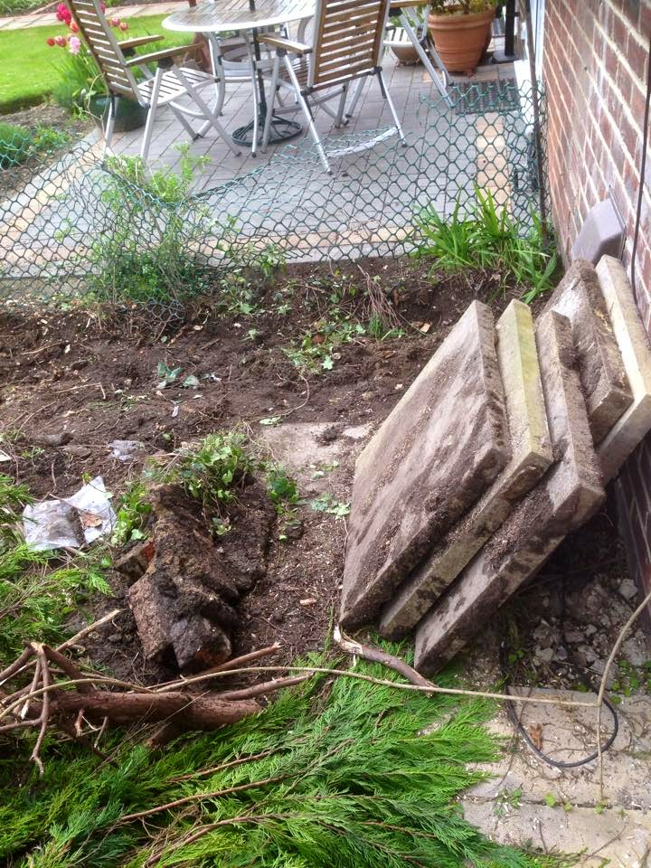 The Yorkshire Dad Blog    : Garden Renovation & Family Fun