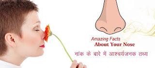 नांक के बारे आश्चर्यजनक तथ्य, Nose Facts in Hindi, nak ke bare me tathya, नाक के बारे में कुछ रोचक तथ्य, नाक के तथ्य, AMAZING NOSE FACTS