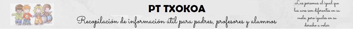 PT TXOKOA
