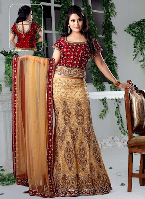 Top-indian-designer-choli-and-bridal-lehenga-blouse-designs-2016-17-10