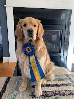 "Franklin Police: Ben Franklin gains his ""Canine Good Citizen"" certification"
