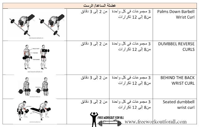 جدول تمارين كمال الأجسام تمارين الساعد و الرست