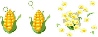 Clipart drawing of an ear of corn turning into popcorn