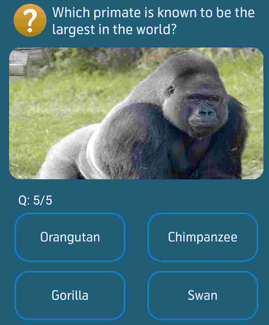 Which primate is known to be the largest in the world?