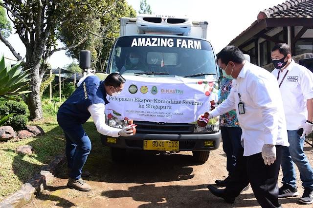Optimis Pertumbuhan Ekonomi,  Kang Emil Lepas Ekspor Produk Hortikultura Jabar di Masa Pandemi Covid-19