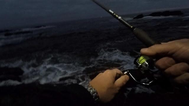CA%25C3%2591A%2BOSCURIDAD - Robalo pescado con equipo de spinning lihgt 🐟